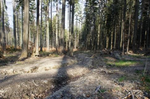 Rozwalony niebieski szlak z Mładej Hory do Soblówki