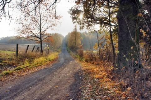 Ścieżka prowadząca do leśniczówki i rezerwatu