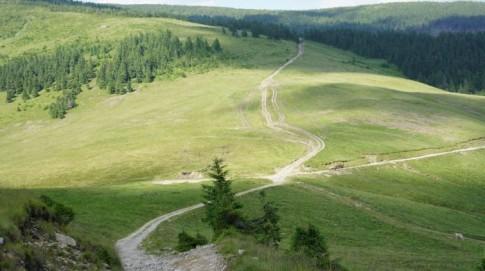 Góry Marmaroskie – na szlaku czerwonym – przełęcz Tarnita Balasani
