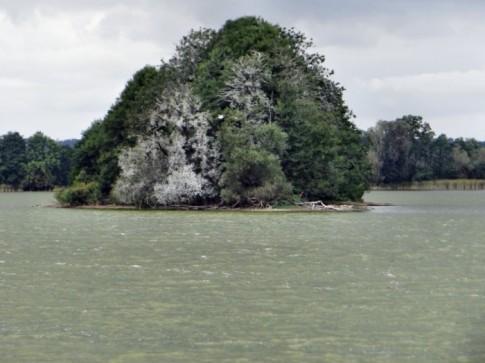 Milicz 09.2012